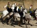 Organiser une sortie ou un séjour au Puy du Fou avec le comité d'entreprise