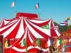 Acheter des places de cirque pour l'arbre de Noël du C.E.