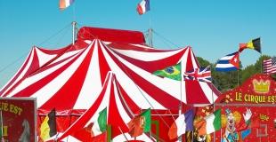 Acheter des places de cirque pour l'arbre de Noël du CSE