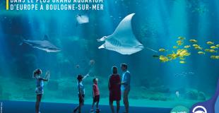 Aquarium Nausicaa : organiser une sortie groupe et billetterie C.E.
