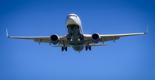 Voyage long-courrier avec son C.E. : quelles précautions et organisation ?