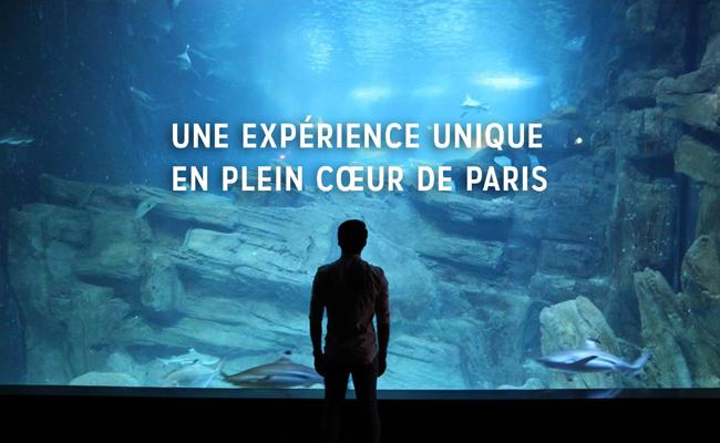 Aquarium de Paris - Cineaqua : billetterie et sortie groupe CSE