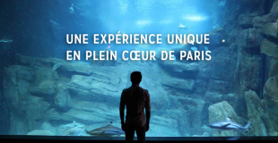 Aquarium de Paris - Cineaqua : billetterie et sortie groupe CSE
