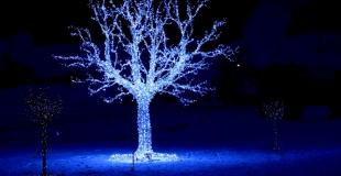 Arbre de Noël Swarowski (Autriche)